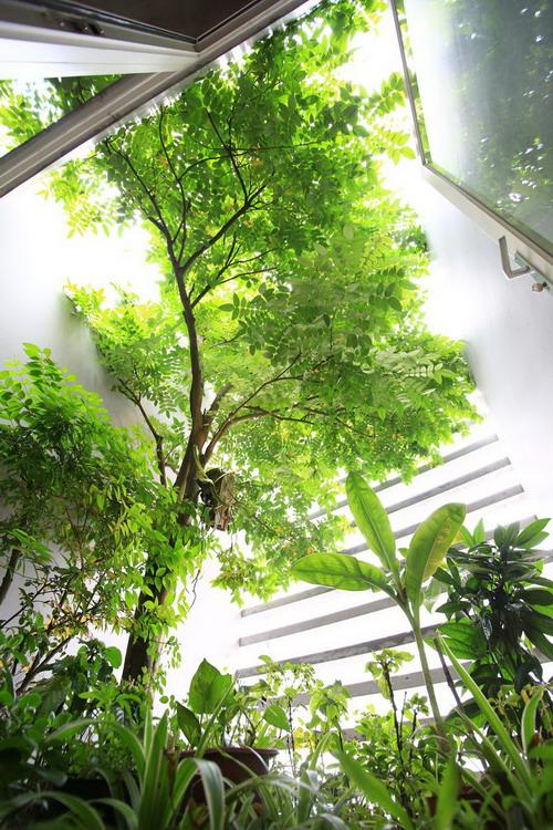 17_Garden2_BENGBENG-Copy