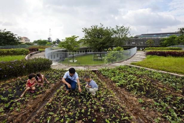 18_experimental_vegetable_garden